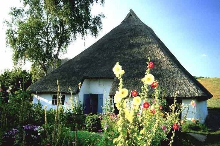 Das Pfarrwitwenhaus in Groß Zicker auf Rügen: Was könnte diesen Garten schöner zieren als Stockrosen?