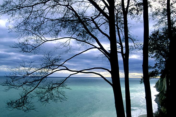 Die Kreideküste am Kollicker Ufer.
