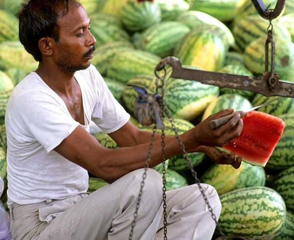 Melonenhändller in Agra.