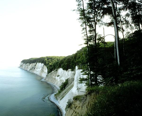 Wo das Meer in den Himmel übergeht: Blick vom Kollicker Hochufer.